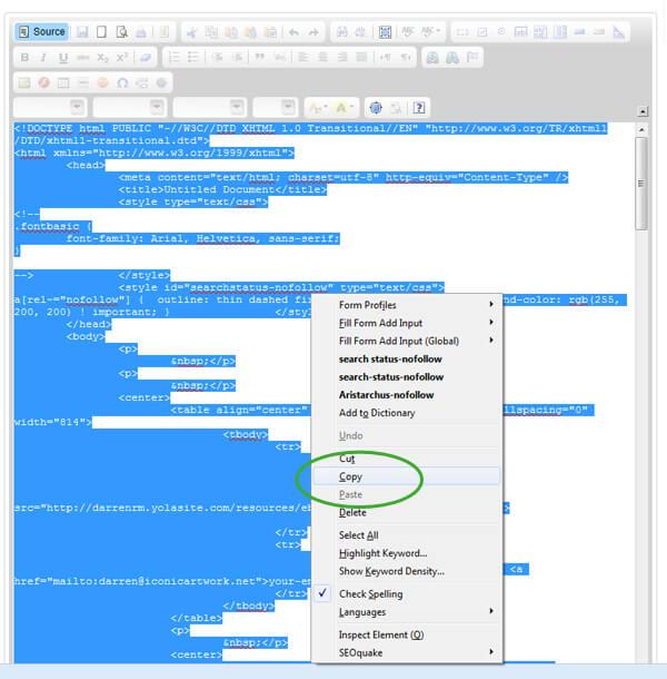 eBay Listing Copy HTML Code