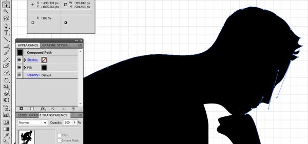 Illustrator Paths