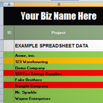 Excel Customer Database