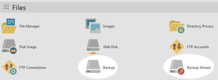 Website cPanel Backup Options