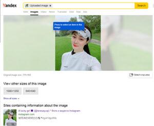 Screenshot of Yandex reverse image search engine